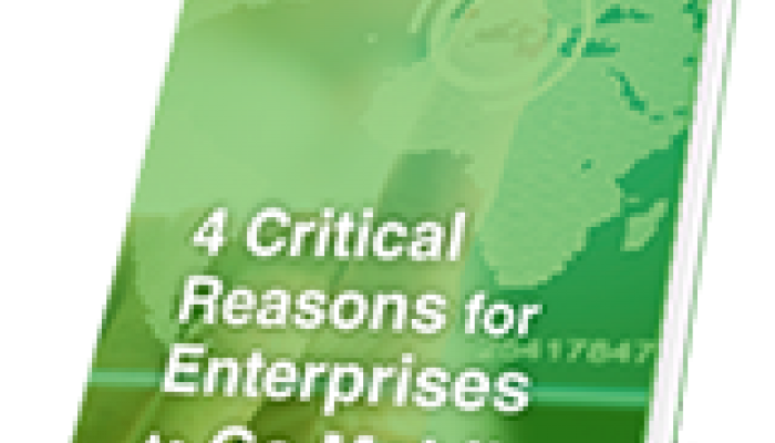 4 Critical Reasons Why Enterprises Should Go Mobile